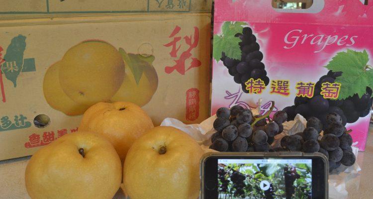 賣造!! 葡萄和水梨我來啦!!